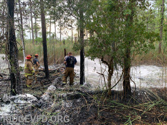 Woods Fire - Point Lookout